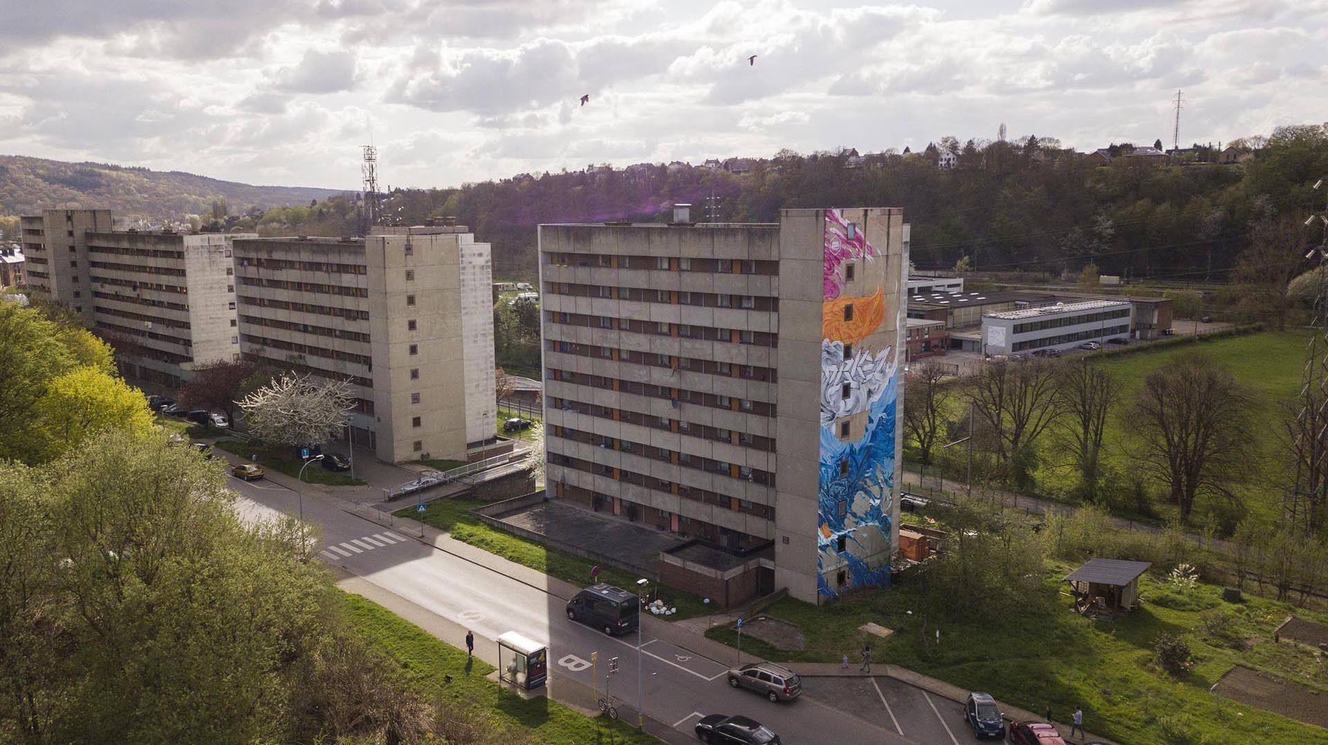 roubens-abstract-organic-vegetal-flower-contemporary-paint-landscape-street-art-natural-mural-belgium_07